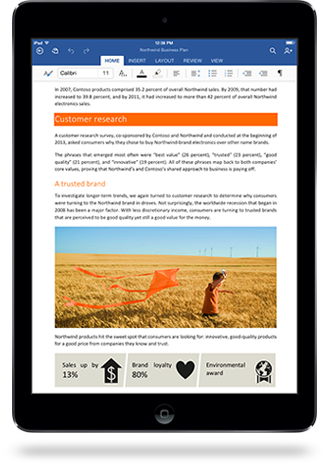 Microsoft Office on iPad