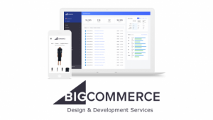 Bigcommerce-Development-Services-home