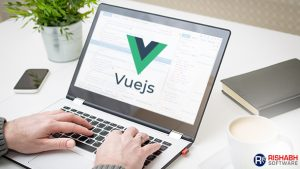 vue.js-development